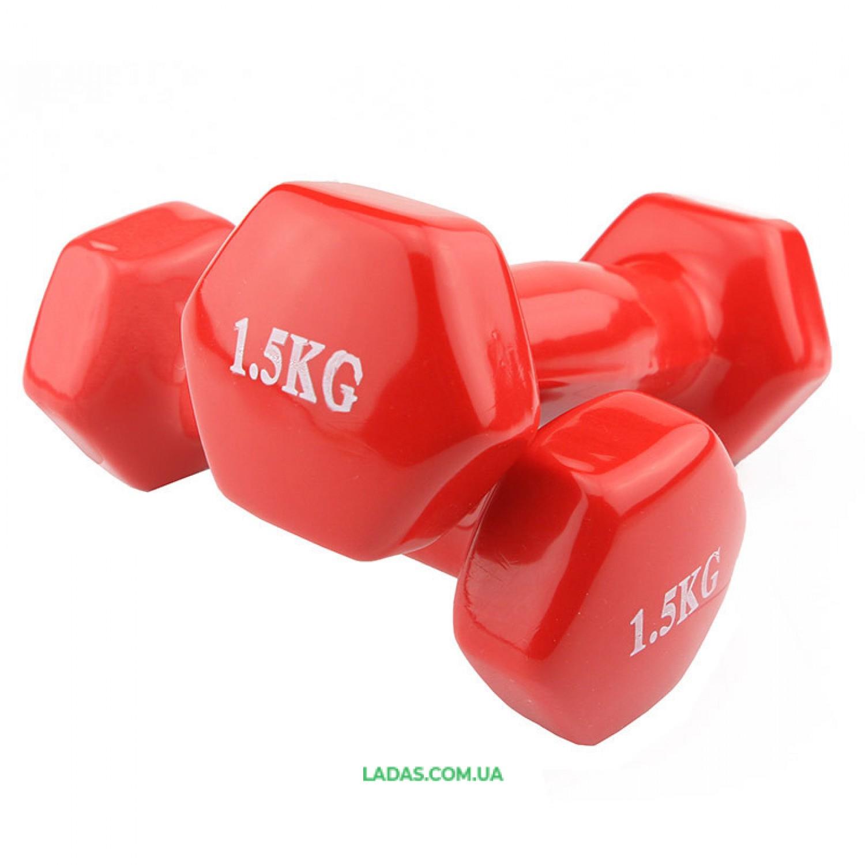 Гантели для фитнеса виниловые (2*1,5кг)