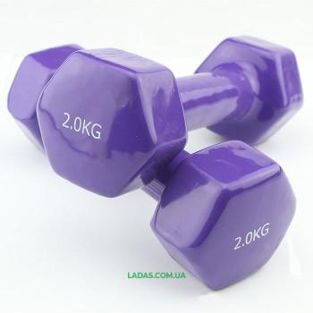 Гантели для фитнеса виниловые (2* 2кг)